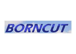 Borncut A/S